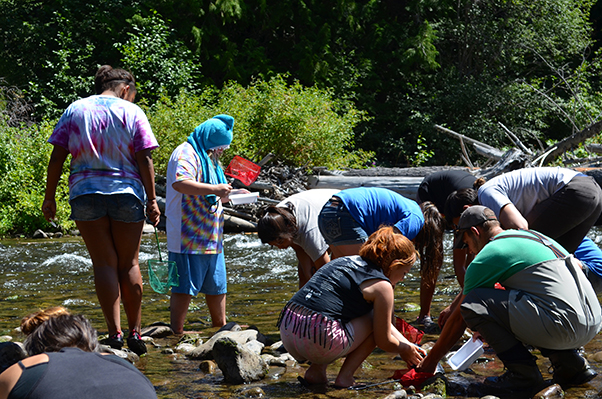 Salmon Camp 2015 Applications Now Open