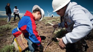 Umatilla tribal members digging roots beneath windmills in their ceded territory.