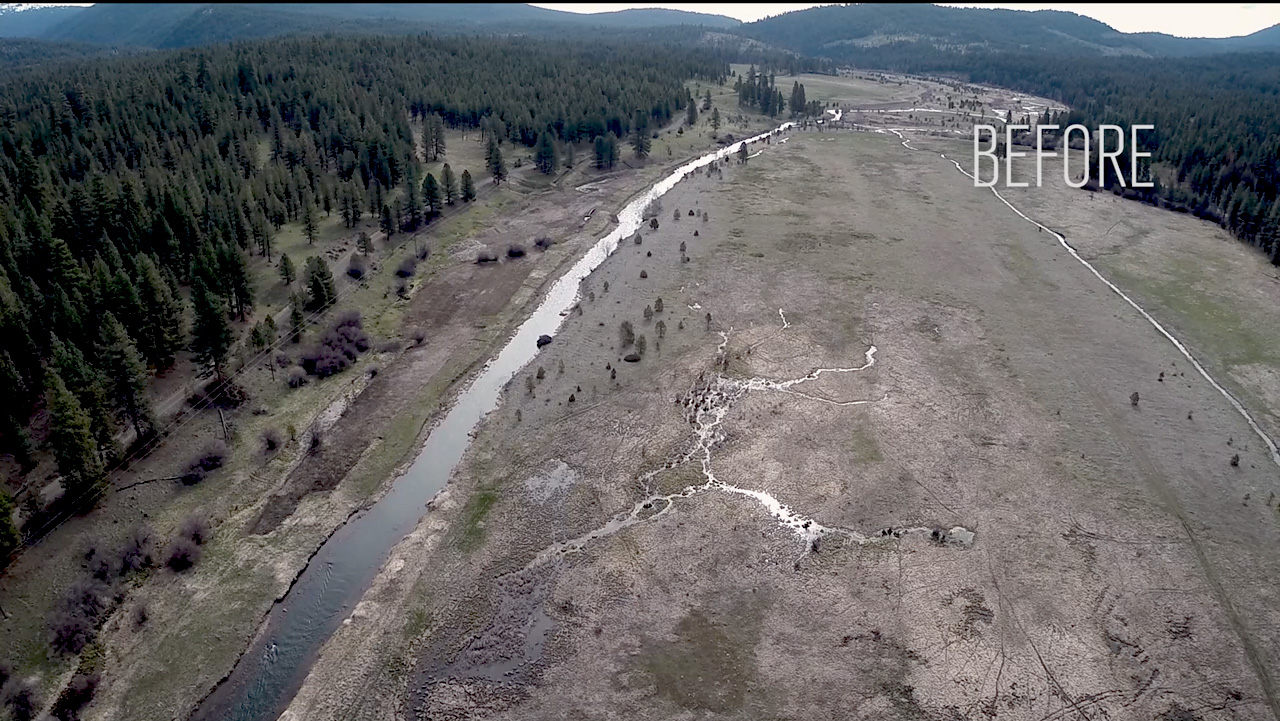 Oxbow Conservation Area Tailings Restoration Project