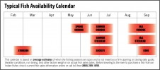 Fish sales availability calendar