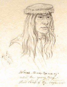 Young Chief, Cayuse tribe