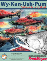 Salmon activity book