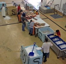 White Salmon Fish Processing Center
