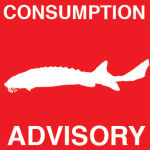Sturgeon Consumption Advisory
