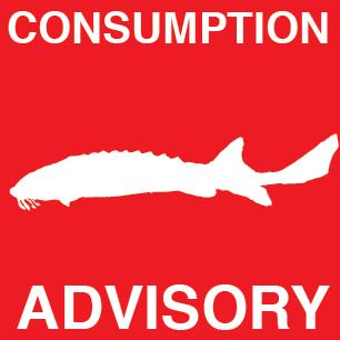 Mid-Columbia Fish Consumption Advisory