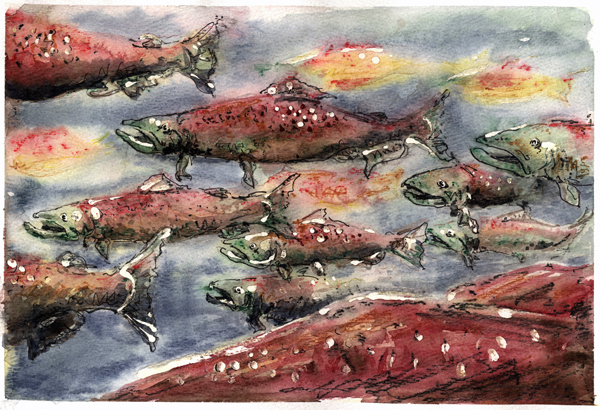 Future of Our Salmon Conference - CRITFC